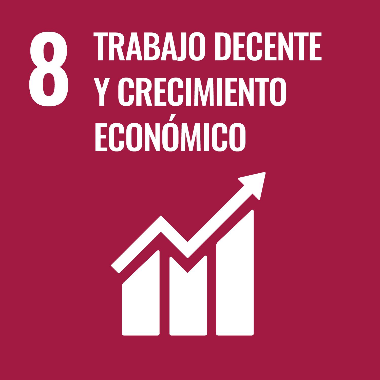SDG 8 Trabajo Decente y Crecimiento Económico
