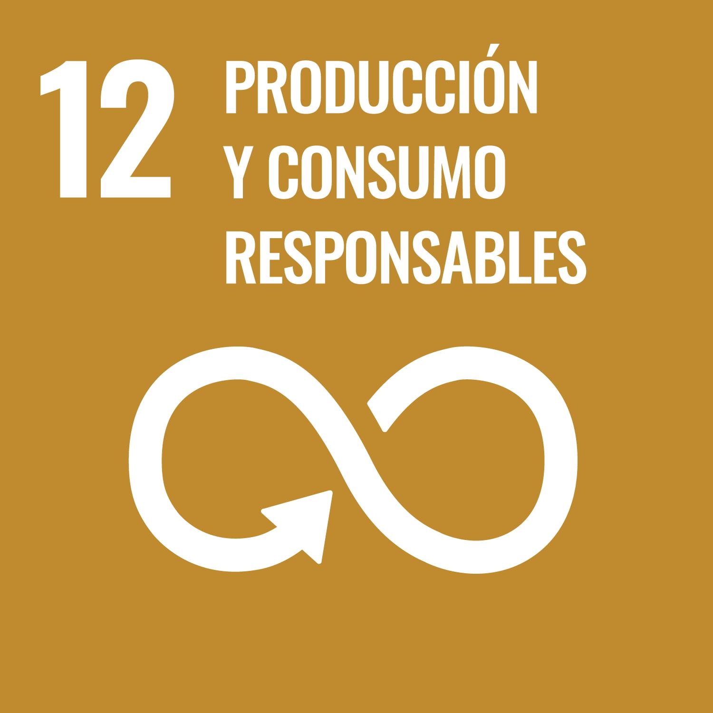 SDG 12 Producción y Consumo Responsables