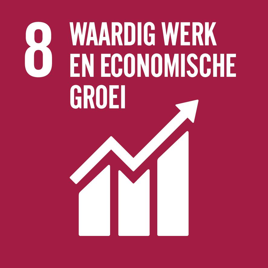 SDG 8 Waardig werk en economische groei