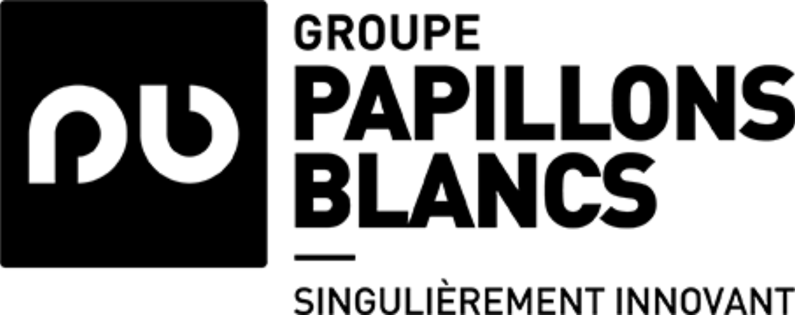 Logo Groupe PB Noir