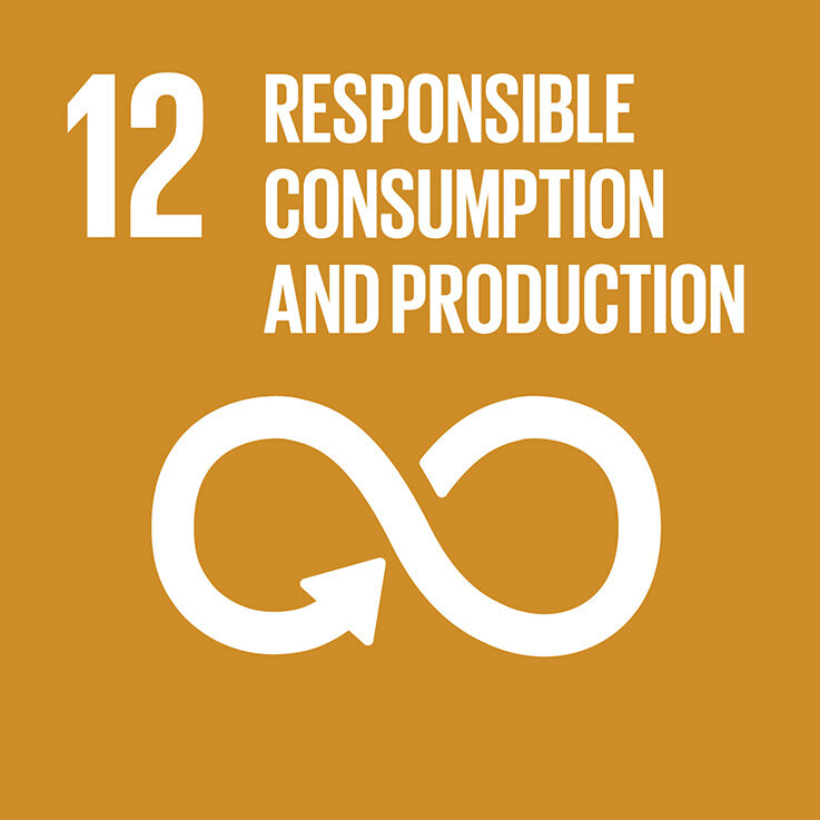 SDG 12 sustainable procurement and business ethics
